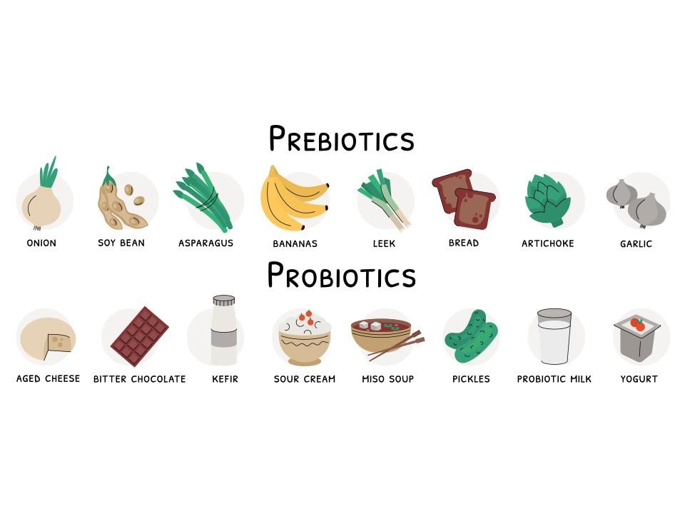 Probiyotik ve Prebiyotikler