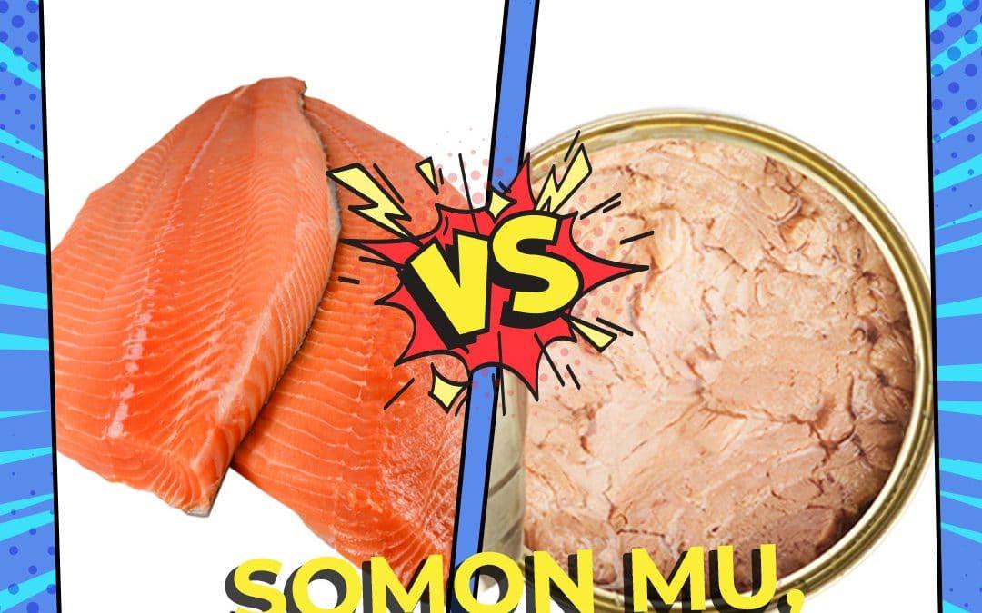 Somon mu, Ton Balığı mı?