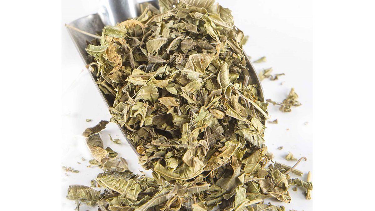 Melisa Çayı'nın Faydaları